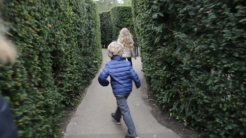 Making Our Way Through The Hampton Court Hedge Maze