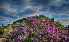 ΠΑΣΧΑ(ΛΙΑ) (Dimitil) Tags: easter religion plants nature spring springtime clouds sky landscape castle stonehouses stonevillages tradition thessaly traditionalarchitecture karditsa