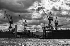 cranes (öppel) Tags: crane cranes harbour port hamburg black white monochrome grey elbe alster north sea nordsee clouds cloudy windy stormy sky sun ocean light water boah ship industry trade handel transport nikon d7100 sigma 1770mm contemporary outside outdoor photography travelling travel vacation