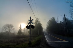 The scenic road_HDR (le Brooklands) Tags: abercorn brume d7000 fog foggy hdr matin morning printemps private privé québec rail railroad scenicroad sigma1224mm spring track voieferrée