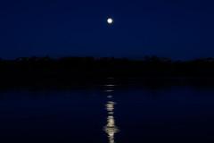 moon and jupiter (sibnet2000) Tags: moon river columbiariver canon5dmarkiv tamron70200f28 moonrise bluehour hdr