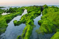 Praia de Patos (jorge.cancela) Tags: praia playa sea shore ocean oceano atlántico atlantic galicia galiza green blue colors europa europe rias baixas