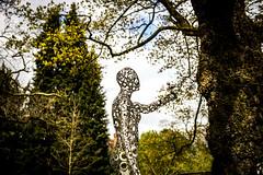 Jacqueline by Daren Greenhow (pixelhut) Tags: bristol uk england southwest bristoluniversity bristolbotanicgardens universityofbristolbotanicgarden eastersculpturefestival darengreenhow sculpture metalsculpture art