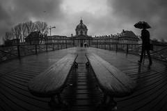 paris My Love - Rainy day (DESAMY) Tags: rain france rue pontdesarts nikon paris street d610