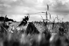 Siesta. (Francesco Griselli Berlucchi) Tags: blackandwhite blackandwhitephotography blancoynegro blackandwhitephotos blancetnoir noiretblanc monochrome bestblackandwhite bestbnw fotografia fotografias fotografiadocumental biancoenero