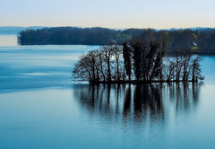 still waters run deep (claudia.kiel) Tags: plön deutschland de schleswigholstein see lake lakeside insel island baum tree silhouette spiegelung reflection landschaft landscape seascape