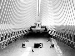 Oculus walk - iPhone (Jim Nix / Nomadic Pursuits) Tags: monochrome manhattan travel architecture nyc oculus snapseed iphone