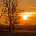 Sunrise - HFF!