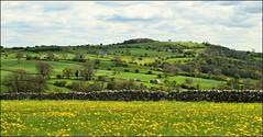 The Limestone way. (A tramp in the hills) Tags: limestoneway derbyshire bonsall massonhill