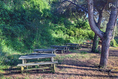 Picnic Park (Pedro Nogueira Photography) Tags: pedronogueira pedronogueiraphotography photography iphone5 iphoneography outdoor portugal obidos picnicpark tables