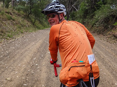 Flies (Neil Ennis) Tags: bicentennialnationaltrail cycling flies killarneybarlowsgateroad mtb bnt