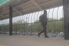 16.MARC.PennLine.523.MD.23April2017 (Elvert Barnes) Tags: 2017 publictransportation publictransportation2017 ridebyshooting ridebyshooting2017 maryland md2017 baltimoremd2017 trainstation commuting commuting2017 baltimoremaryland baltimorecity marylanddepartmentoftransportation mtamaryland april2017 27april2017 thursday27april2017commutetowashingtondcdentalappointment thursday27april2017enroutetowashingtondc marc marctrain marcmarylandarearegionalcommutertrainservice marc2017 marcpennlinetrain523 marcpennlinetrain523southbound thursday27april2017marcpennlinetrain523southbound marctrain523 commuters commuters2017 viewfromtrainwindows viewfromtrainwindows2017 marcpennlinetrainstations marctrainstations halethorpestation halethorpestation2017 marchalethorpestation