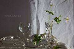 (Matilda Diamant) Tags: stilllife home glass spring still snowdrop glassware rusalka