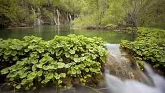 Plitvice (BigPilou) Tags: park lake water canon pose long exposure natural mark lac falls ii l 5d cascade parc f4 1740 hoya plitvice longue naturel nd400