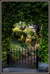 Secret Garden (The Old Brit) Tags: flowers trees plants leaves garden flora gate arch gardening path secret hedge greenery paths archway horticulture shrubs southport pathway secretgarden shrubbery stonesteps gardengate merseyside irongate sefton stonestep churchtown hedging halfhidden copingstones