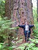 Tony Farque, USFS archaeologist and anthropologist with 800 year old fir tree in Cascadia State Park.Man with large tree