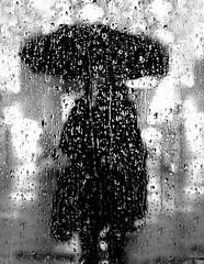 Behind Raindrops (C_MC_FL) Tags: vienna wien street blackandwhite bw woman white black window rain weather silhouette umbrella canon person photography eos austria sterreich focus fotografie fenster raindrops sw frau waterdrops tamron schwarz regen wetter gettyimages wassertropfen fokus regenwetter regenschirm regentropfen weis umris kontur strase 18270 60d b008