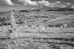 L1013775 CV35 IR Parkway view (i-lenticularis) Tags: landscape ir m8 infrared canberra act cv214 leicam8