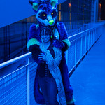 Anthrocon 2013 thumbnail