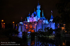 DDE May 2013 - Sleeping Beauty Castle