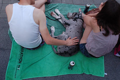 "Stillleben mit Hund • <a style=""font-size:0.8em;"" href=""http://www.flickr.com/photos/39658218@N03/9331977523/"" target=""_blank"">View on Flickr</a>"