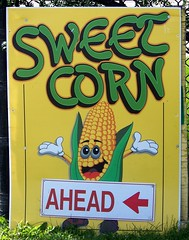 Sweet Corn Ahead (Will S.) Tags: signs ontario canada sign corn richmond mypics happyham