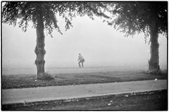 A foggy day III