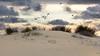 Otoño en la Bota (pericoterrades) Tags: atardecer playas dunas puntaumbría labota