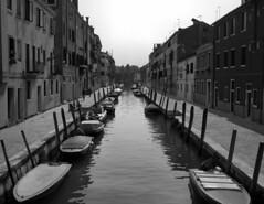 "Typical ""Street"" in Venice (Rodney A. Johnson) Tags: street venice blackandwhite bw italy 120 film mediumformat canal streetphotography scala epson 6x7 agfa rodinal 200x expiredfilm filmphotography mamiya7 sekonic v750 80mmplanar agfascala200x l778"
