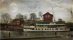 .. rain in the air .. (Kerstin Frank art) Tags: trees houses moon texture birds buildings boat flag skeletalmess kerstinfrankart kerstinfranktexture lenabemanna
