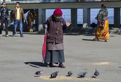 Blessings (bhodaporel) Tags: street old lady mall dove darjeeling redumbrella