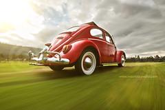 _MG_4122 (mauricio cevallos www.mauriciocevallos.com) Tags: auto vw volkswagen quito ecuador photographer beetle automotive escarabajo ragtop
