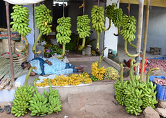Tamil Nadu (nicnac1000) Tags: sleeping india market bare indian barefoot napping tamil tamilnadu