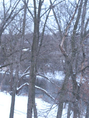 "Snow on the DuPage River • <a style=""font-size:0.8em;"" href=""http://www.flickr.com/photos/109120354@N07/11570135646/"" target=""_blank"">View on Flickr</a>"