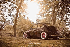 So Cal Style Bug (InzanePhoto) Tags: california vw bug volkswagen puertorico beetle oldschool retro aircooled vwtrends inzanephoto