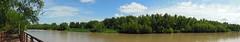 "Río Paraná - San Pedro <a style=""margin-left:10px; font-size:0.8em;"" href=""http://www.flickr.com/photos/62525914@N02/12213121133/"" target=""_blank"">@flickr</a>"