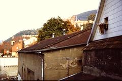 HEIDELBERG (D) 1979 pic13 (streamer020nl) Tags: germany deutschland slide dia scan wash laundry heidelberg 1979 allemagne washing neckar duitsland brd badenwrtemberg