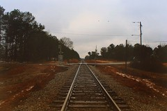 (Nic $cxtt) Tags: original trees winter sky color art nature beautiful beauty birds train vintage landscape photography surrealism traintracks tracks surreal photograph excellent intriguing visual vibe 2014 intrigued etfnff