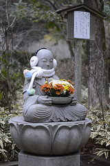 Warmed Buddha (Igor Voller) Tags: flowers japan stone scarf shrine peace buddha kamakura  meigetsuin earwarmers lobsterit