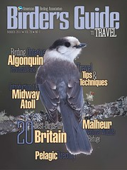 ABA Bird Guide cover (Greg Schneider (gschneiderphoto.com)) Tags: bird greyjay grayjay cover magazine aba