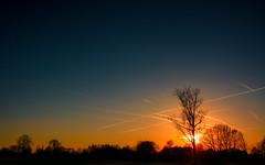 Sunset-6881 (EB_Creation) Tags: f2840 170700 mm d7100 nikon outdoor outside nature evening light shadow cool line lines outstanding noir blanc white black photo lumière world flickr artistic art bella beautiful superbe breathtaking orange blue orangeandblue cielo