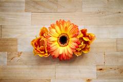 IMG_7427 (bess_bg) Tags: flowers blossom fairy orange garden spring tulip gerber cut relax stilllife stillife indoor bouquet