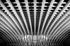 (Daniel Feito Fotografia) Tags: calatrava arquitectura oviedo night nightphoto asturias larga exposicion blancoynegro