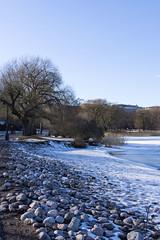 Töölönranta (jannaheli) Tags: suomi finland töölö töölönranta nikond7200 visitfinland luonto nature talvi winter sunnyday