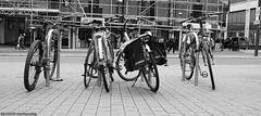 The obligatory bicycles shot. ((c) MAMF photography.) Tags: art arty artistic artwork britain blackwhite blackandwhite bw biancoenero beauty blancoynegro blanco blancoenero candid city citycentre dark d7100 enblancoynegro england ennoiretblanc flickrcom flickr google googleimages gb greatbritain greatphotographers greatphoto bicycle bicycles image inbiancoenero images interesting leeds ls1 leedscitycentre mamfphotography mamf monochrome nikon noiretblanc noir nikond7100 north negro northernengland onthestreet photography photo pretoebranco road sex schwarzundweis schwarz street town uk unitedkingdom upnorth westyorkshire yorkshire zwartenwit zwartwit zwart