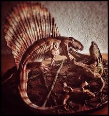 Dimetrodon vs Ophiacodon (Preview) (RobinGoodfellow_(m)) Tags: dimetrodon ophiacodon vs vitali klatt martin garratt urzeitshop