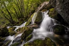 Les cascades de la Doriaz - Lovettaz (73) - 02 (glassonlaurent) Tags: cascade 73 savoie france rivière water waterfalls landscape paysage eau cascades la doriaz lovettaz