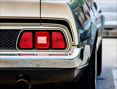 looking forward to being at the back.. (Stu Bo) Tags: 1sweetride 1ofakind 1971mustangmach1 oldschool onewickedride oneofakind musclecar mustanglust mycarcanbeatupyourcar mymach1 bigboytoy bigsexy sexonwheels idreamofcarsmotorsandhorsepower ilovemycar icon certifiedcarcrazy canon classiccar coolcar canonwarrior beautiful ride rebel reflections rearend worldcars warrior wheels sbimageworks shadows showcar smooth sunlight summer scenery slammin streetmachine kustom killermustang dreamcar 351cleveland vintagecar vintageautomobile hangingoutwiththefamily happiness hotrod goodtimes