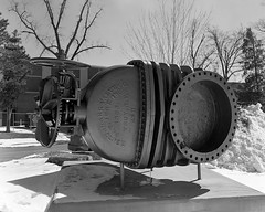 Strange antlered beast (Howard Sandler (film photos)) Tags: ottawa lemieuxisland valve blackandwhite film largeformat 4x5 graflex pacemaker hp5 xtol wollensak
