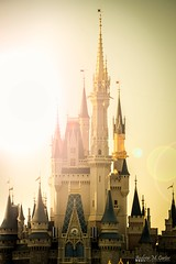 Golden Glow! (andrew_carter091) Tags: disneyphotography disneyside disneyphotographer disneycastle disneyattraction disney disneycolors waltdisney disneyparks disneycharacter disneyvacationclub waltdisneyworldresort disneyaddict disneyworld waltdisneyworld magickingdom mainstreetusa cinderella cinderellacastle princess royalty sunflare sunglare sunset sunsetphotography orlando florida themepark mykissimmee camera professionalphotographer photo photographer photography travelphotographer travelphotography nikon nikond3300